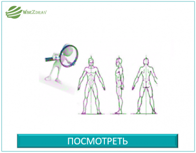 Структурная Функциональная Диагностика записаться на прием Троицк Москва